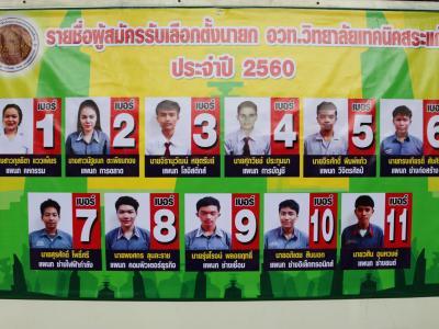 เลือกตั้งนายกองค์การวิชาชีพแห่งประเทศไทย