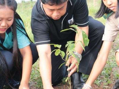โครงการ ศธ.ปลูกป่าร่วมใจทำดีเพื่อพ่อ